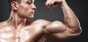 muscle building without weights