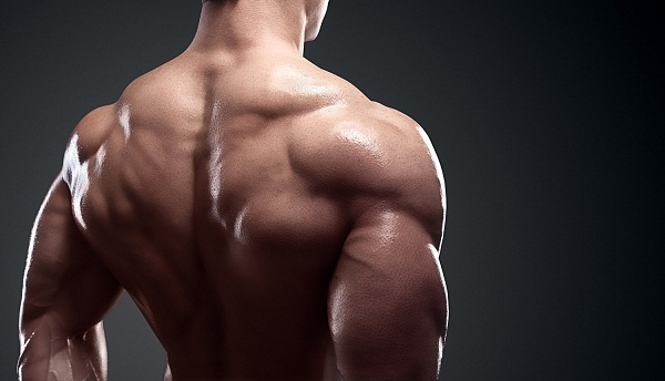 How to building muscle fast