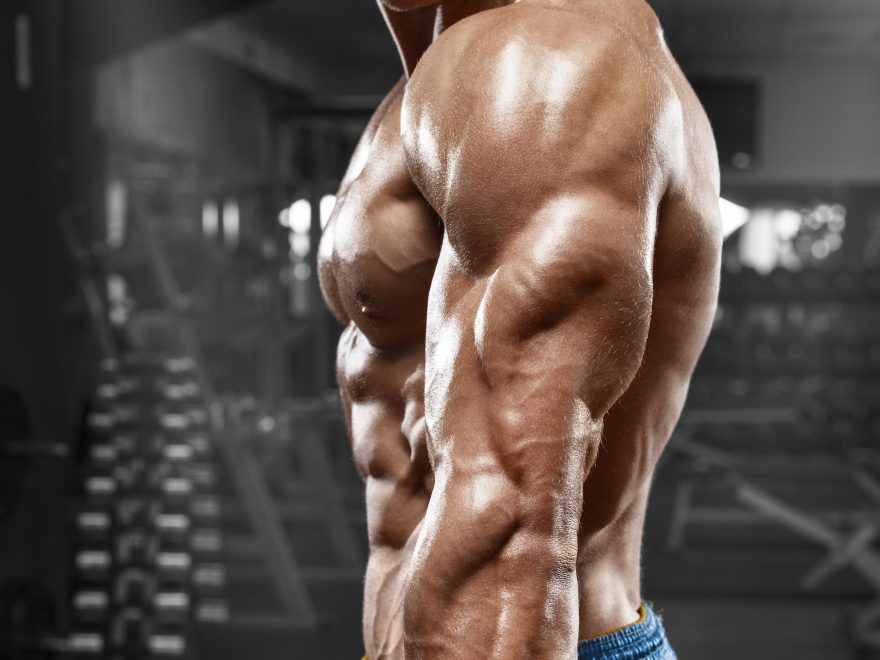 triceps exercises dumbbells